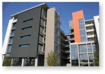 tribute lofts condominiums condos for rent or for lease